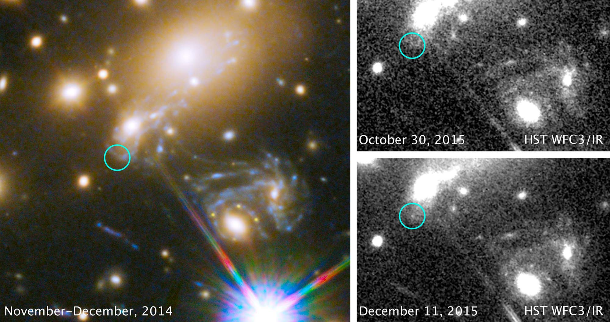 Observations of the Frontier Field galaxy cluster MACS J1149+2223 and Supernova Refsdal. Galaxy mass models