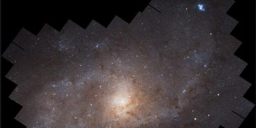 Hubble mosaic of the Triangulum galaxy (M33)